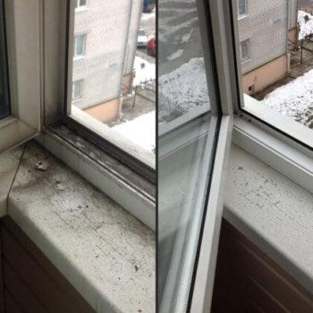 мытьё окон и фасадлов зданий в кемерово не дорого